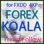 FOREX KOARA for FXDD_4XP